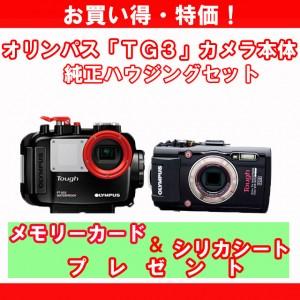 tg31_edited-1